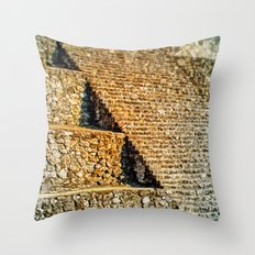 PATTERNS OF HISTORY Throw Pillow