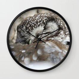 Sweet dreams boreal owl Wall Clock