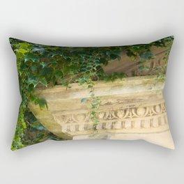 Ionic Ivy, Boston Rectangular Pillow