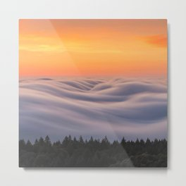 Mount Tamalpais State Park in California USA Metal Print