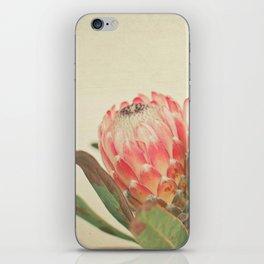 Pink Ice iPhone Skin