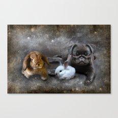 Rabbits and a Pug Canvas Print