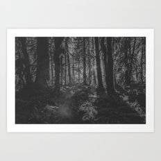 Sunset on Tree in the Hoh Rainforest - Travel Sunset Forest Nature Trees adventure black and white Art Print