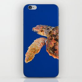Loggerhead sea turtle iPhone Skin