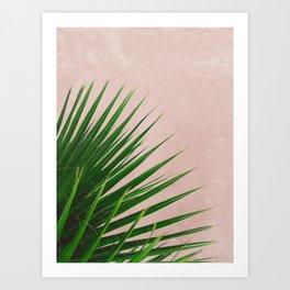 Summer Time   Palm Leaves Photo Art Print