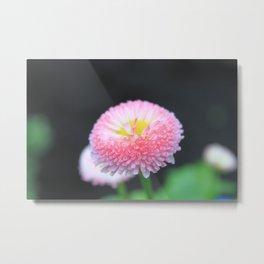 Kayla's Pink Flower Metal Print