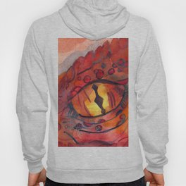 Dragon´s Eye Hoody