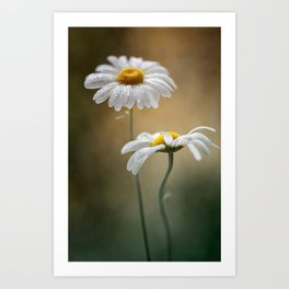 Flowers for Two Art Print