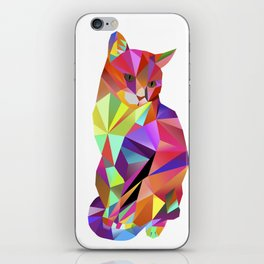 Alfonso the Cat - Karl Kater iPhone Skin