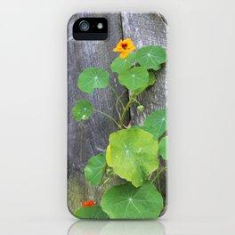 The Garden Wall iPhone Case