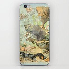 SEA CREATURES COLLAGE, OCEAN ILLUSTRATION iPhone Skin