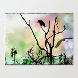 The Lonely Crow At Sunset Canvas Print