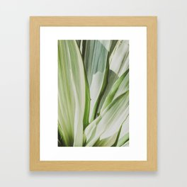 s Framed Art Print