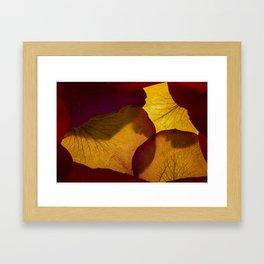 Red Rose Hanakami Framed Art Print