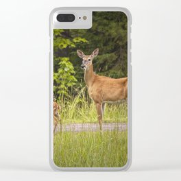 Doe and Fawn along a roadside near Iron Mountain Michigan Clear iPhone Case