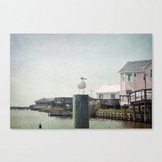 The Life of a Seagull Canvas Print