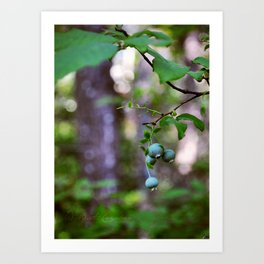 taste of summer. Art Print