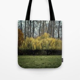 Lovely Willow Tote Bag