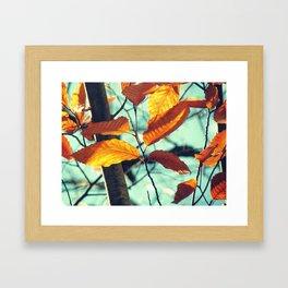 Famous fall 26 Framed Art Print