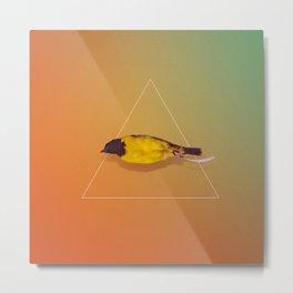 little bird II Metal Print