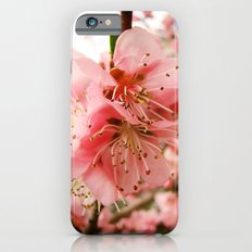Peach Blossom iPhone 6s Slim Case