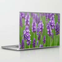 lavender Laptop & iPad Skins featuring lavender by GISMANA