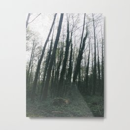 EVERGREEN: Whose woods are these I think I know  Metal Print