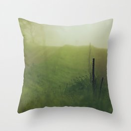 Country Road Mornings Throw Pillow