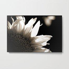 Sunflower-B&W Metal Print