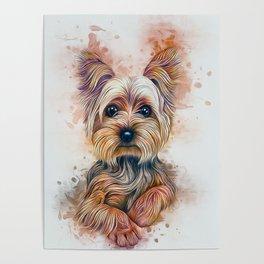 Yorkshire Terrier Poster