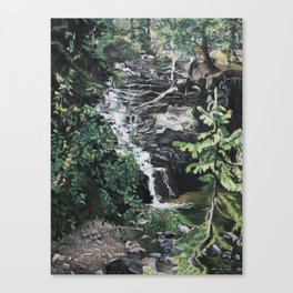 One Half of Twin Falls Canvas Print