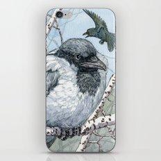 Pensive Crow iPhone & iPod Skin