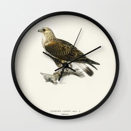 Rough-legged Hawk (TRIORCHIS LAGOPUS) illustrated by the von Wright brothers Wall Clock