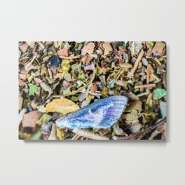 Colorful butterfly wing on compost full frame texture in background Metal Print