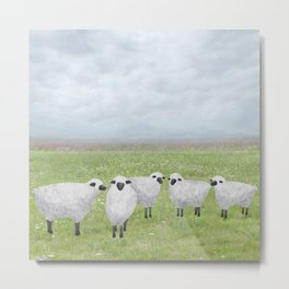 sheep and queen anne's lace Metal Print