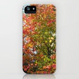 Autumn Leaves I iPhone Case