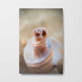 Smooth Erosion Coastal / Nautical / Nature Photograph Metal Print
