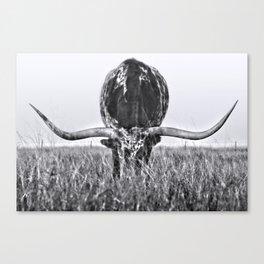 B&W Longhorn Canvas Print