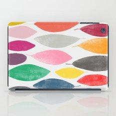 float 3  iPad Case