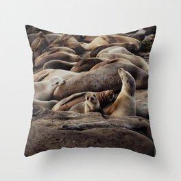 Baby Sea Lion Photograph Throw Pillow