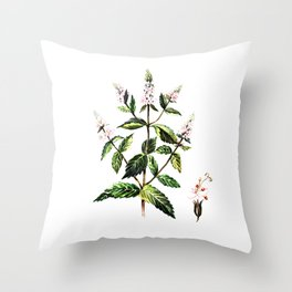 watercolor peppermint Throw Pillow