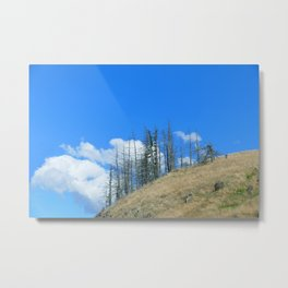 At The End Of The World Metal Print