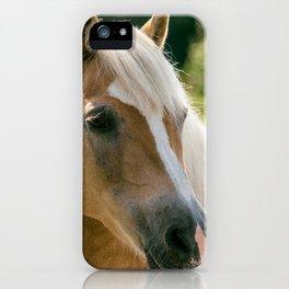 Haflinger Mare Ultra HD iPhone Case