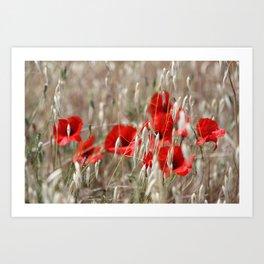 Poppies  - JUSTART © Art Print