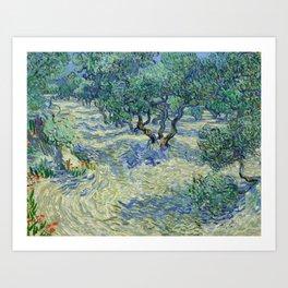 Olive Orchard by Vincent van Gogh Art Print
