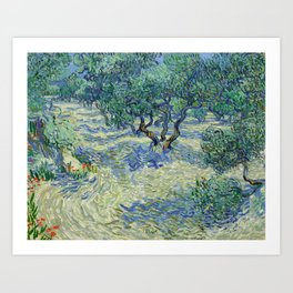 Olive Orchard by Vincent van Gogh Art Print