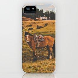 Horse among the sacred fields (Cusco, Peru) iPhone Case