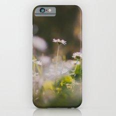 White Daisy Slim Case iPhone 6s