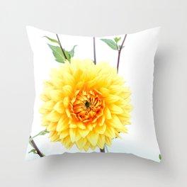 Bursting sunlight dahlia Throw Pillow