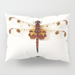 Dragonfly Collector Pillow Sham